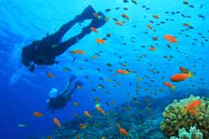 Scuba Diving in nearby ocean waters around Pattaya